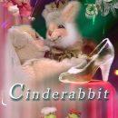 Cinderabbit! DVD